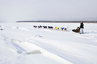 Hans Gatt on the Yukon River shortly after leaving the village checkpoint of Ruby in third place during the 2010 Iditarod