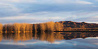 Wetland, Bosque del Apache National Wildlife Refuge, Socorro, New Mexico, USA