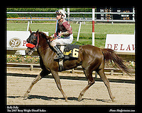 As seen in the Arabian Horse Galleries exhibit at The Kentucky Horse Park<br /> <br /> Rolly Polly.The 2007 Betty Wright Distaff Stakes