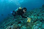 Craig Humphrey conducting reef survey