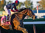 September 27, 2014: Tonalist, ridden by Joel Rosario, wins the Jockey Club  Gold Cup on Jockey Club Gold Cup Day at Belmont Park Race Track in Elmont, New York. Scott Serio/ESW/CSM