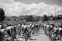 2013 Giro d'Italia.stage 13: Busseto - Cherasco..regrouping of the peloton after a roundabout