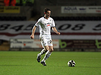 Pictured: Stephen O'Halloran of Swansea<br /> Re: Coca Cola Championship, Swansea City FC v Barnsley at the Liberty Stadium. Swansea, south Wales, Tuesday 09 December 2008.<br /> Picture by D Legakis Photography / Athena Picture Agency, Swansea 07815441513