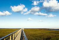 Wetlands observatory deck, Grays Beach, Yarmouth, Cape Cod, MA