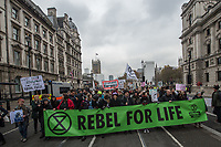 Extinction Rebellion 24-11-18