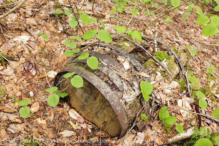 Old wooden barrel along the Sawyer River Logging Railroad (1877-1928) near Camp 6. This old rail-line is now the Sawyer River Trail in Livermore, New Hampshire USA.