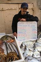 Europe/Provence-Alpes-Côte d'Azur/83/Var/Saint-Tropez: Le Marché aux Poissons- Détail étal d'un pêcheur