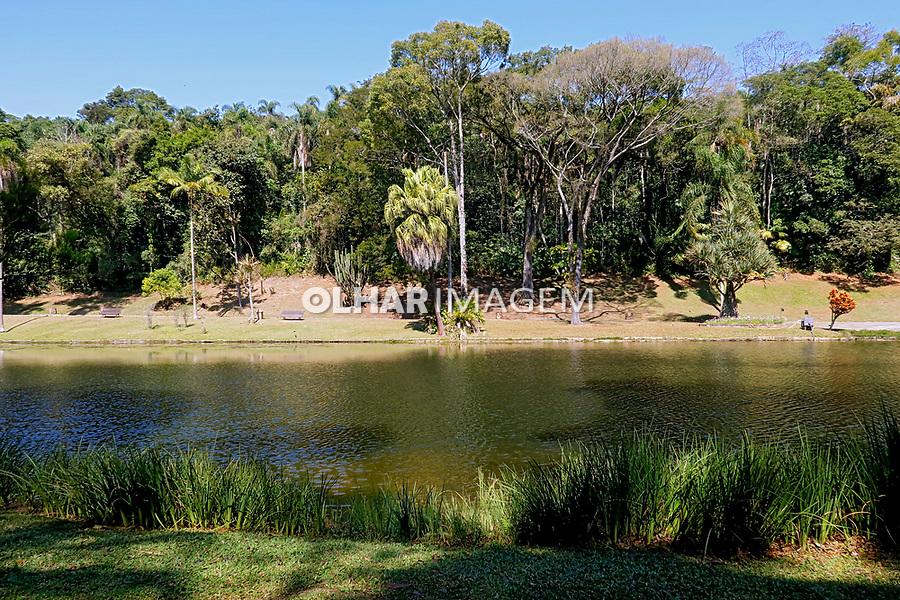 Lago das Ninféias, Jardim Botânico, São Paulo. 2021. Foto Luíza Lucchetti