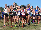 State Cross Country Championship