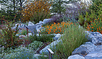 Hummingbird Hill, California native plant display garden at Southern California Montane Botanic Garden, The Wildlands Conservancy Oak Glen Preserve