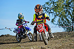 NELSON, NEW ZEALAND - 2021 Mini Motocross Champs: 2.10.21, Saturday 2nd October 2021. Richmond A&P Showgrounds, Nelson, New Zealand. (Photos by Barry Whitnall/Shuttersport Limited) 52