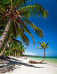 Dominikanische Republik, Punta Cana, Bavaro Beach | Dominican Republic, Punta Cana, Bavaro Beach
