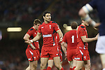 Mike Phillips.<br /> RBS 6 Nations 2014<br /> Wales v Scotland<br /> Millennium Stadium<br /> <br /> 15.03.14<br /> <br /> ©Steve Pope-SPORTINGWALES