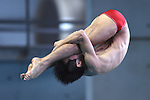 Ken Terauchi,<br /> SEPTEMBER 19, 2015 - Diving :<br /> All Japan Diving Championship 2015<br /> Men's 3m Springboard<br /> Preliminary<br /> at Tatsumi International Swimming Center, Tokyo, Japan.<br /> (Photo by AFLO SPORT)