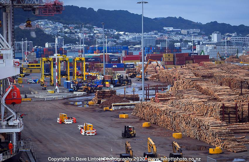 CentrePort in Wellington, New Zealand on Wednesay, 29 January 2020. Photo: Dave Lintott / lintottphoto.co.nz