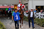 February 21, 2015: Bluff with Kerwin D Clark up in the Risen Star Stakes at the New Orleans Fairgrounds Risen Star Stakes Day. Steve Dalmado/ESW/CSM