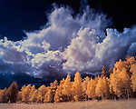 Monsoon Storm over San Francisco Mountains, Arizona (Infrared)