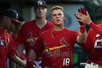 Palm Beach Cardinals Nolan Gorman (18) high fives teammates after scoring a run during a Florida State League game against the Clearwater Threshers on August 10, 2019 at Roger Dean Chevrolet Stadium in Jupiter, Florida.  Clearwater defeated Palm Beach 11-4.  (Mike Janes/Four Seam Images)