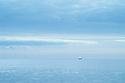 A singel sailboat in the open blue ocean