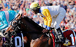 ARLINGTON HEIGHTS, IL - AUGUST 13: Danish Dynaformer #1, ridden by Patrick Husbands, passes the grandstand for the first time during the Arlington Million at Arlington International Racecourse on August 13, 2016 in Arlington Heights, Illinois. (Photo by Jon Durr/Eclipse Sportswire/Getty Images)