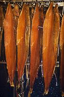 Europe/France/Aquitaine/40/Landes/Peyrehorade: Jacques Barthouil: La Maison du Saumon- Fumage des saumons sauvages des Gaves et de l'Adour //  France, Landes, Peyrehorade, Maison du Saumon, Jacques Barthouil, smokehouse for wild salmons fished in the Adour River