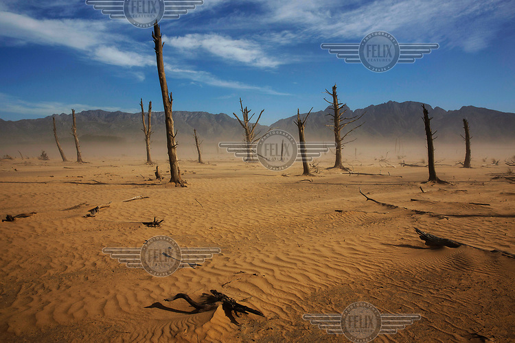 Gusts of wind kick up sand in the dry bed of the Theewaterskloof reservoir, which supplies much of the water for the city of Cape Town. In early 2018, when the dam's water was predicted to decline to critically low levels, the city announced plans for 'Day Zero', when the municipal water supply would largely be shut off, potentially making Cape Town the first major city in world to run out of water. However, strict rationing staved off 'Zero Day' until the winter 2018 rainy season ended a three year drought and replenished the reservoir sufficiently to enable the city authorities to ease the water ration.