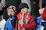 UEFA European Championship at Cardiff City Stadium - Wales v Cyprus : <br /> Welsh football fans.