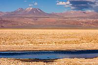 South America, Chile, Salar de Atacama laguna Chaxa,volcanos