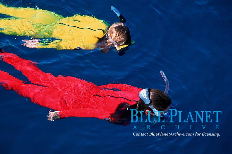 snorkelers, British Virgin Islands, Caribbean, Atlantic Ocean