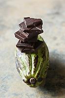 Europe/France/Ile-de-France/75006/Paris: Chocolat chez Christian Constant Chocolatier Confiseur- Chocolat et Cabosses , fruit  du cacaoyer - Stylisme : Valérie LHOMME