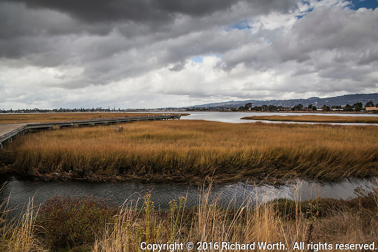 An urban wetland under a stormy sky - the observation platform extends into Arrowhead Marsh with the Oakland, California skyline on the horizon.