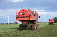Pea vining with PMC harvesters - Lincolnshire, August