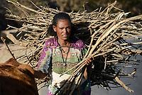 ETHIOPIA, Tigray, highlands, woman carry firewoods / AETHIOPIEN, Tigray, Hochland, Tigray Frau mit Feuerholz