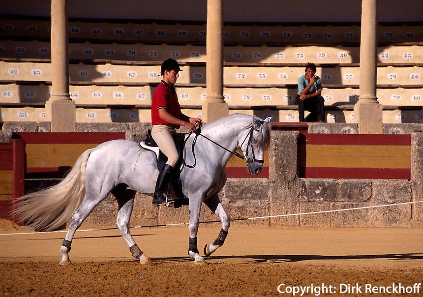Spanien, Andalusien, Reitunterricht in der Stierkampfarena von Ronda