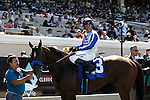 Capital Account winner of the Pat O'Brien Stakes at Del Mar Race Course in Del Mar, California on August 26, 2012.