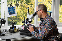BNPS.co.uk (01202 558833)<br /> Pic: ZacharyCulpin/BNPS<br /> <br /> Pictured: David at work in his studio<br /> <br /> A collection of micro masterpieces so tiny they fit inside the eye of a needle have sold for a whopping £90,000.<br /> <br /> Micro artist David Lindon has recreated iconic artworks including Van Gogh's Starry Night in miniature form - each measuring just 0.5mm wide.<br /> <br /> David, who lives in Bournemouth, Dorset, uses a variety of micro-plastics to carve and paint his tiny pieces, with the aid of a microscope, and each one took months of painstaking work to complete.