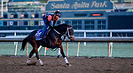 October 30, 2019: Breeders' Cup Juvenile Turf Sprint entrant Chimney Rock, trained by Michael J. Maker, exercises in preparation for the Breeders' Cup World Championships at Santa Anita Park in Arcadia, California on October 30, 2019. Scott Serio/Eclipse Sportswire/Breeders' Cup/CSM