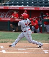 Wilfred Astudillo - 2021 Arizona League Reds (Bill Mitchell)