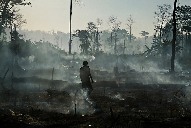 A Mayan settler from the highlands walks across a newly burnt corn field inside the Mayan Biosphere.