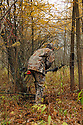 00105-045.12 Bowhunting: Archer wearing Realtree AP is stalking through lowland cover during fall.   Camouflage, hunt, deer, sneak. V4A1