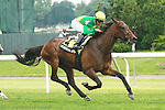 Mystical Star with Jose Lescano win the Grade II New York Stakes for 3-year olds & up, going 1 1/4 on the inner turf at Belmont Park.  Trainer Christophe Clement.  Owner Cheyenne Stables LLC..