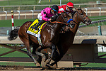 """ARCADIA, CA. SEPTEMBER 29:  #4 Game Winner, ridden by Joel Rosario, and #1 Rowayton, ridden by Florent Geroux, are neck and neck in the stretch of the American Pharoah Stakes (Grade l) """"Win and You're In Breeders' Cup Juvenile Division"""" on September 29, 2018 at Santa Anita Park in Arcadia, CA. (Photo by Casey Phillips/Eclipse Sportswire/CSM)"""
