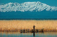 .Reed-gathering on Beyshir Lake, with the Edegol Mountains behind. Central Anatolia, Turkey...