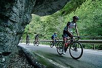 Alessandro Covi (ITA/UAE-Team Emirates) & co. up the Passo di San Valentino (cat.1)<br /> <br /> 104th Giro d'Italia 2021 (2.UWT)<br /> Stage 17 from Canazei to Sega di Ala (193km)<br /> <br /> ©kramon