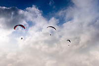 Three men paragliding over O'ahu.