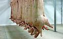 20/12/06 - MONTLUCON - ALLIER - FRANCE - MONTLUCON VIANDES SAS. Demi carcasse de porc - Photo Jerome CHABANNE