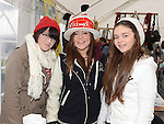 Dunleer Christmas Fair 2013