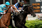 Horses compete in the Woodford Reserve Turf Classic at Churchill Downs in Louisville, Kentucky on May 6, 2006.  Barbaro, ridden by Edgar Prado, won the 132nd Kentucky Derby in the tenth race of the day....
