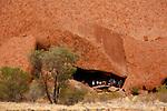 Parc national d'Uluru- Kata Tjuta.De nombreux sites d'Uluru sont sacrés pour les aborigènes
