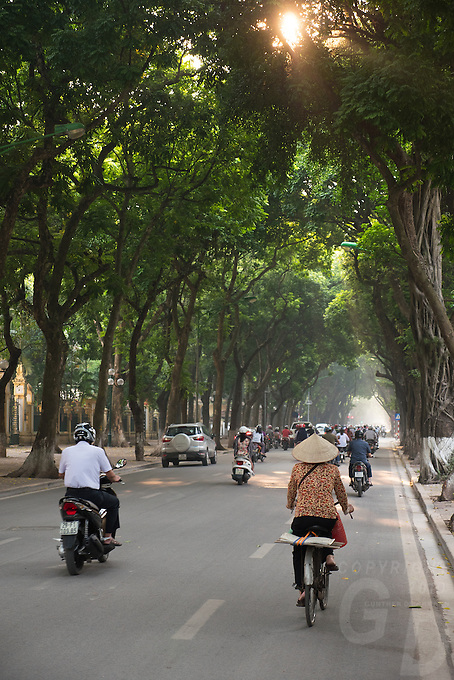 Trees align the roads in the middle of Hanoi.<br /> Hanoi, the capital of Vietnam, is known for its centuries-old architecture and a rich culture with Southeast Asian, Chinese and French influences. At its heart is the chaotic Old Quarter, where the narrow streets are roughly arranged by trade. There are many little temples, including Bach Ma, honoring a legendary horse, plus Đồng Xuân Market, selling household goods and street food.